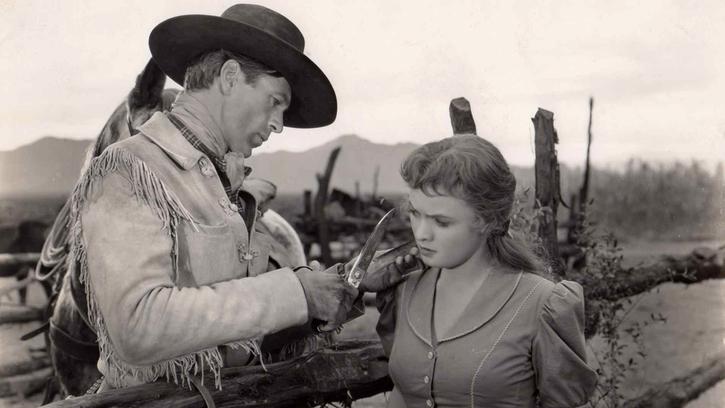 Le Cavalier du désert (William Wyler)