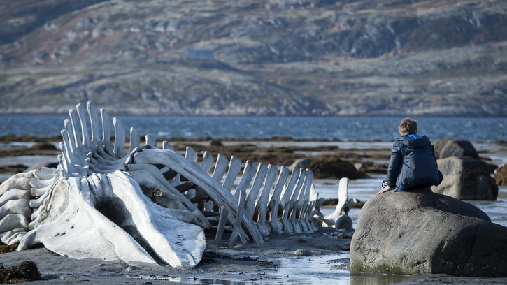 Leviathan (Andrei Zviaguintsev)