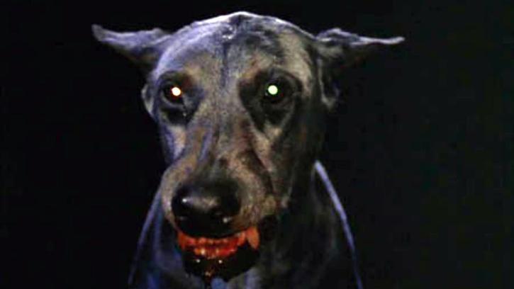 Zoltan, le chien sanglant de Dracula