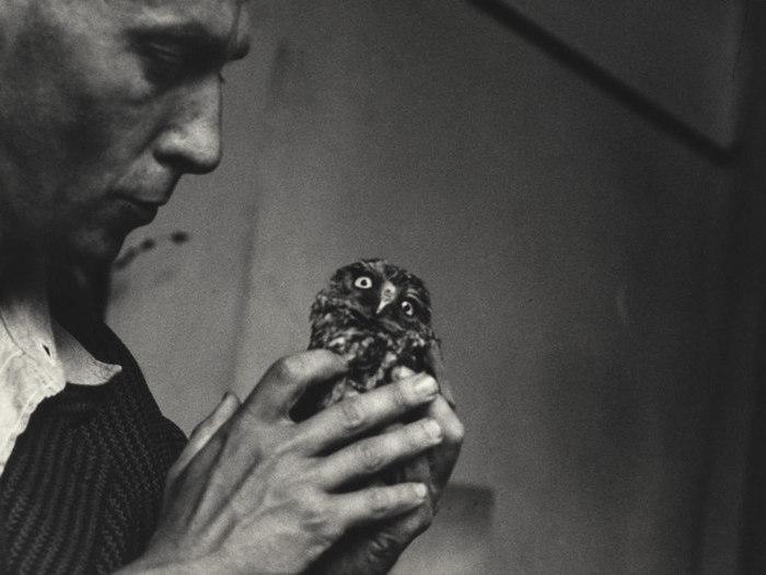 """Chris Marker avec la chouette Anabase du film """"Les Astronautes"""" de Walerian Borrowicz (ca. 1959)"""