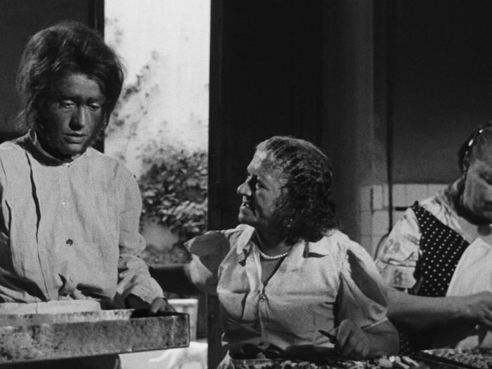 Le Mari de la femme à barbe (Marco Ferreri, 1964)