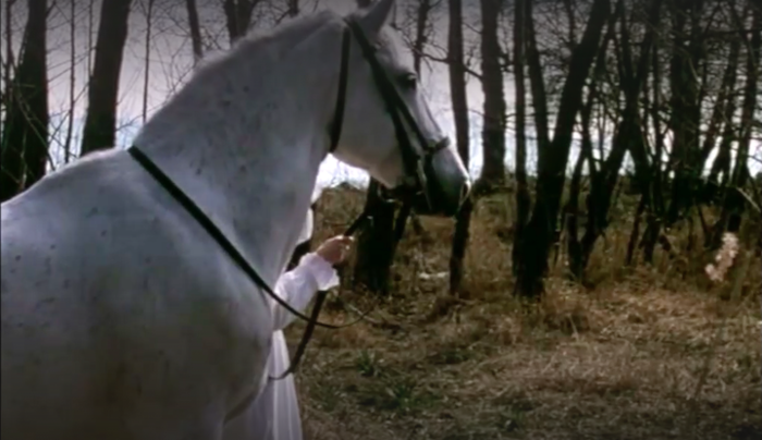 Le cheval blanc de King Lear