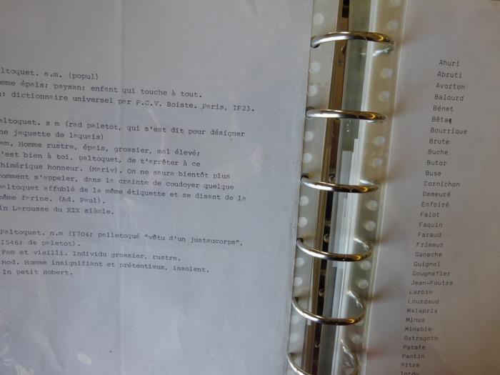 Liste d'adjectifs, recherche pour Le Paltoquet. [DEVILLE394-B74]