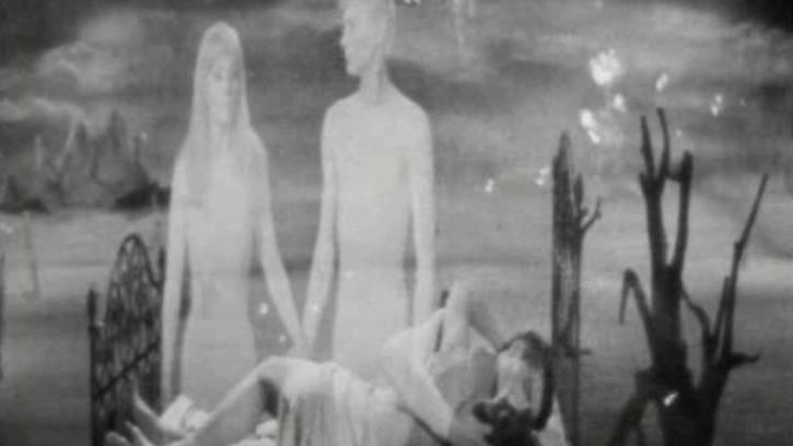 Le Cinéma du Diable - Regard sur le cinéma fantastique français