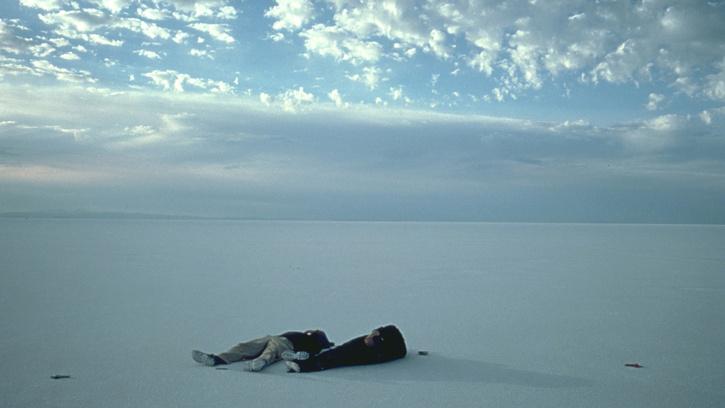 Dreamachine cinéma : l'art de Gus Van Sant. Conférence de Matthieu Orléan