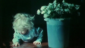 As I Was Moving Ahead Occasionally I Saw Brief Glimpses Of Beauty (Jonas Mekas)