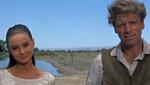 Le Vent de la plaine (John Huston)