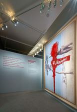 Scénographie de l'exposition Michelangelo Antonioni
