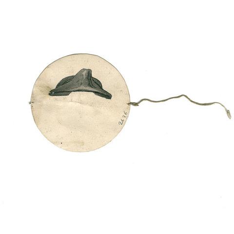 187429.jpg